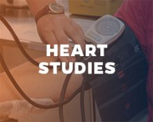 Heart studies