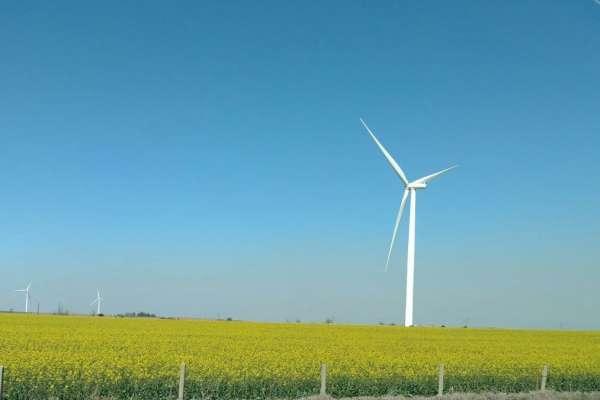 Oklahoma Panhandle windmills