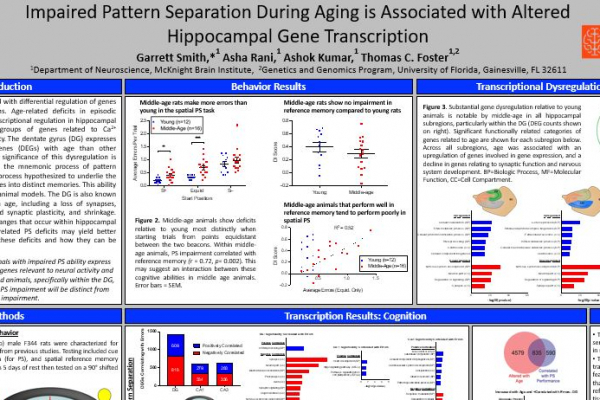 Impaired Pattern Separation During Aging is Associated with Altered Hippocampal Gene Transcription