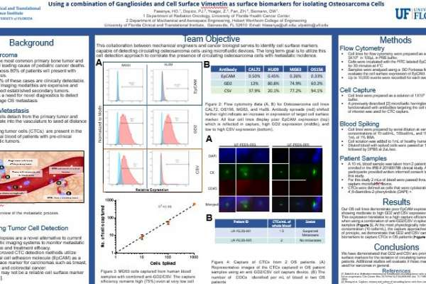 Using a combination of Gangliosides and Cell Surface Vimentin as surface biomarkers for isolating Osteosarcoma Cells