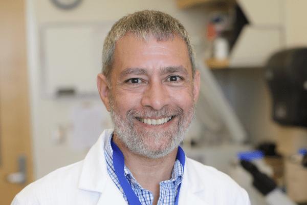 Anthony Maurelli, PhD