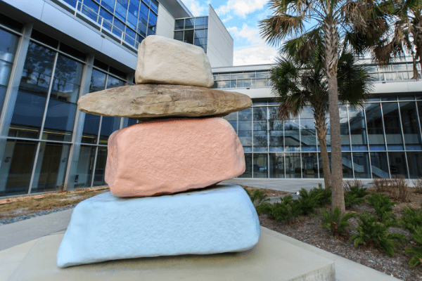 CTSI rocks placeholder