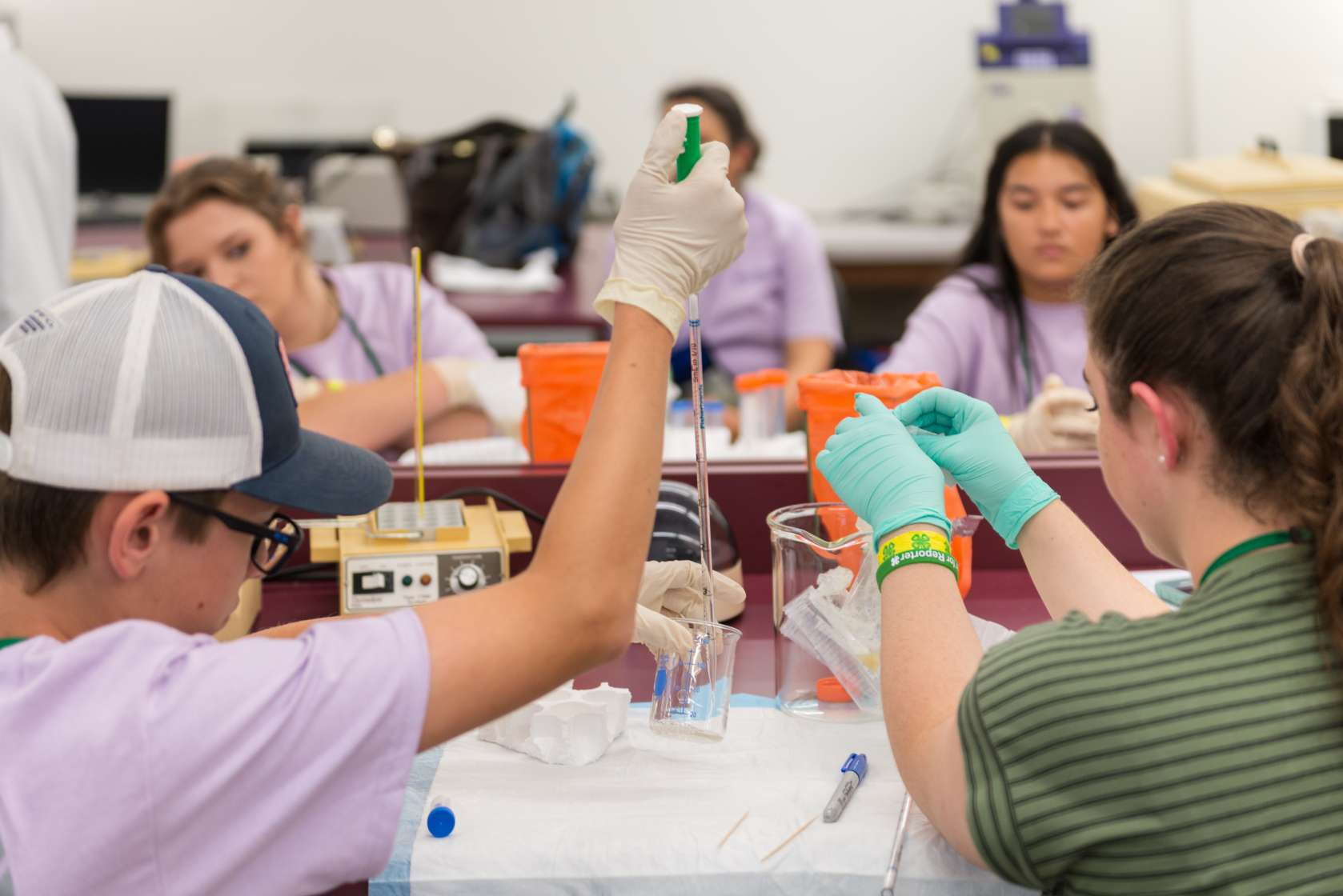 Students and pipettes