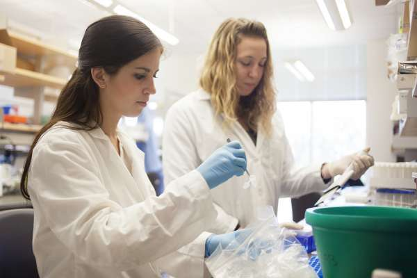 two scientists collaborating in a lab